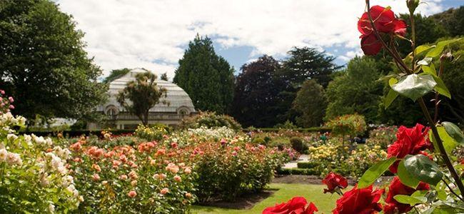 Botanic Garden in Hagley Park